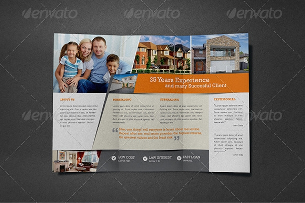 Real Estate Agent Brochure