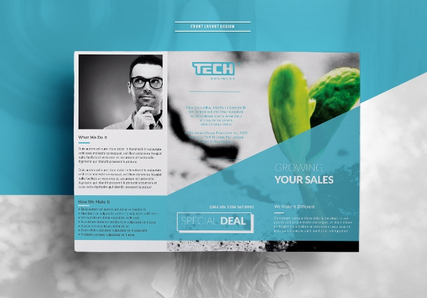 Classy Trifold Brochure Design