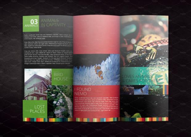 Multi Color Brochure Mockup