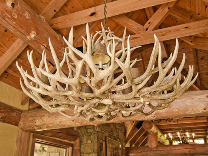 unique antler chandelier illuminates the dining room