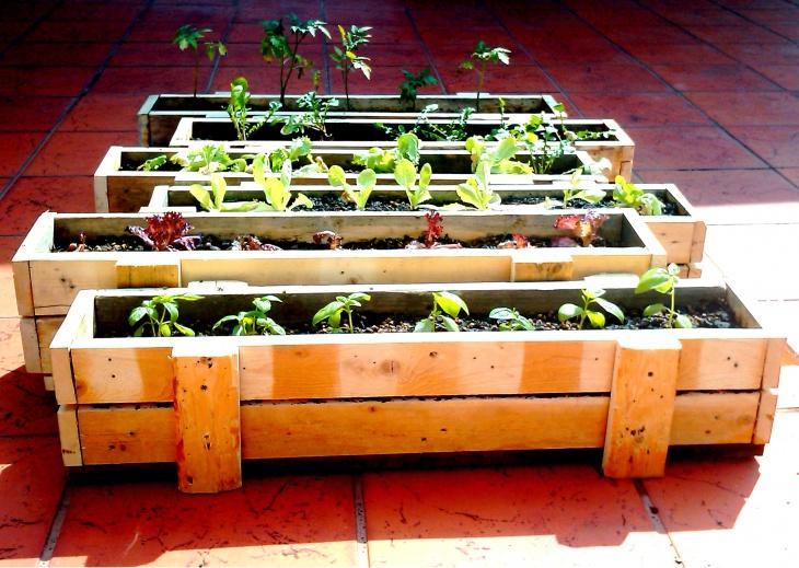 garden in wooden pallet