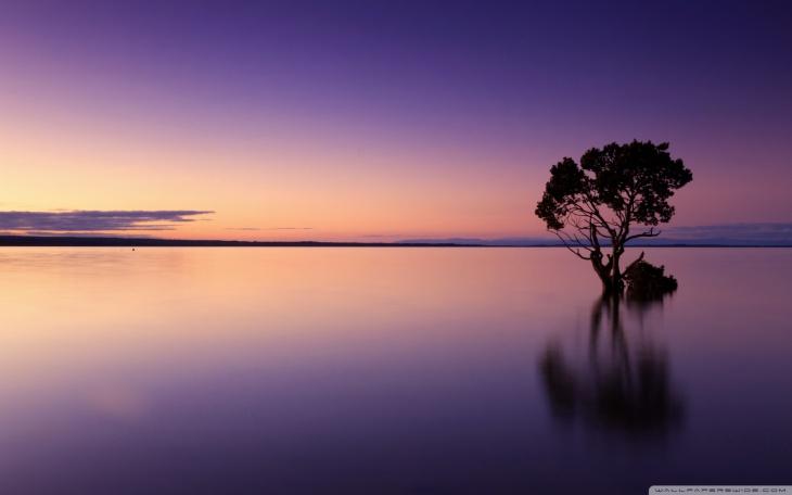 ocean dusk nature wallpaper