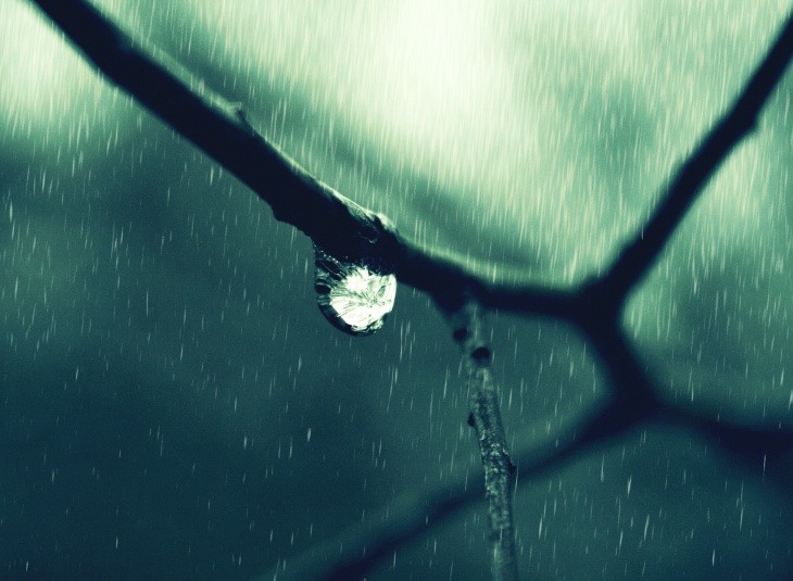 amazing rain drop background