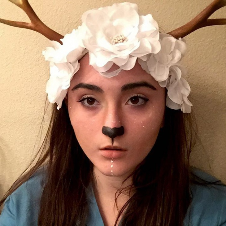 beautiful deer makeup