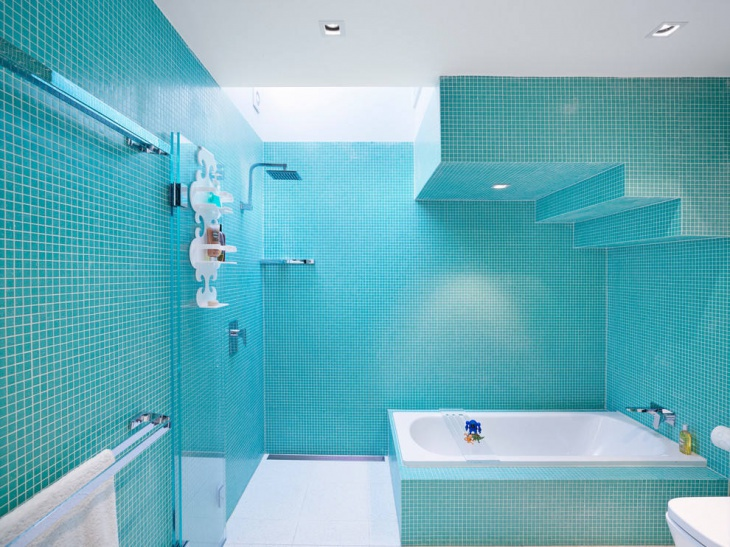 stylish bathroom with blue color tiles