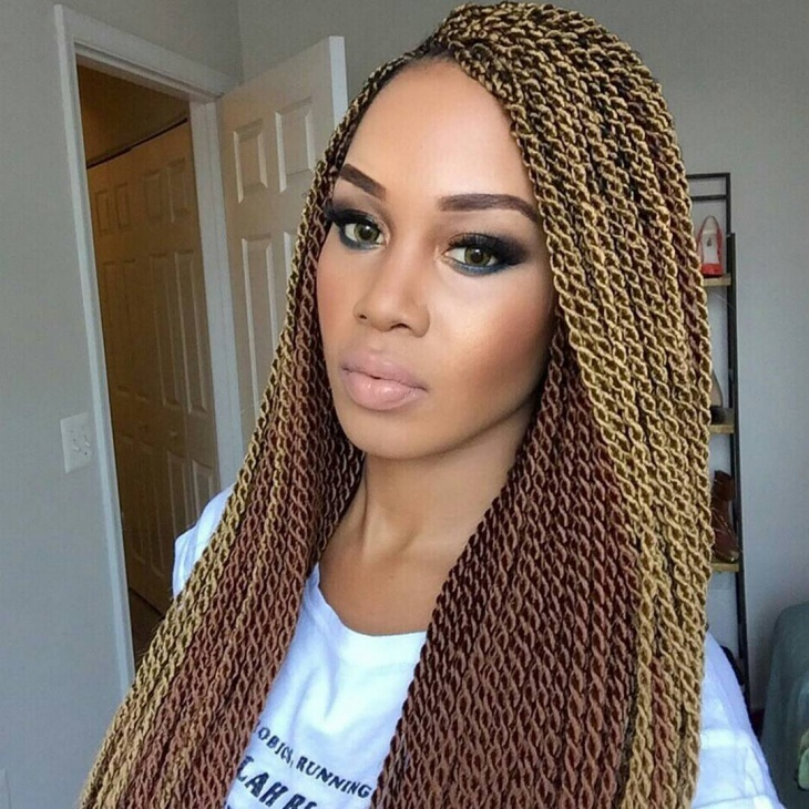 Blonde Twisted Braid Idea