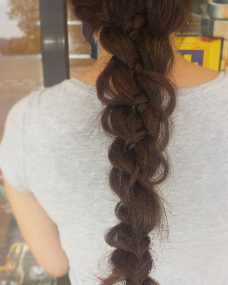 Simple Braid Hairdo