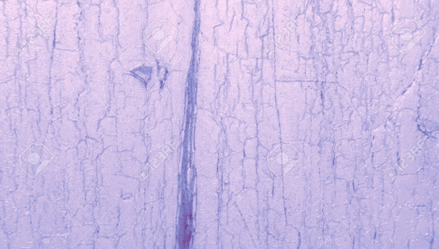 Light Pink Cracked Paint Wood Texture