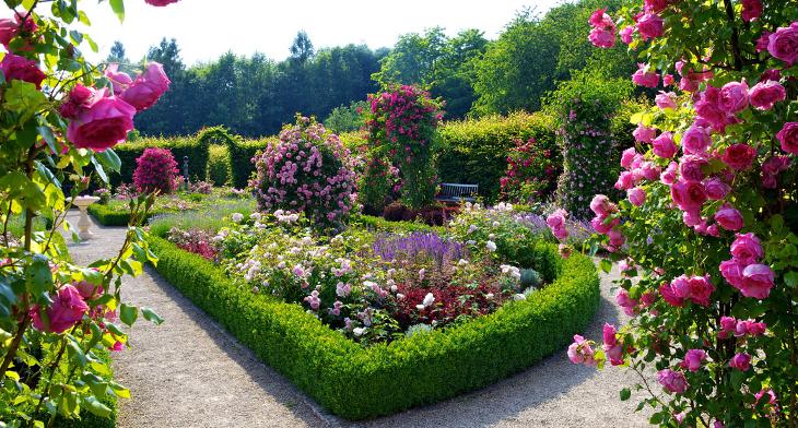 perennial garden designs. Best Perennial Garden Design 20  Designs Ideas Trends Premium PSD