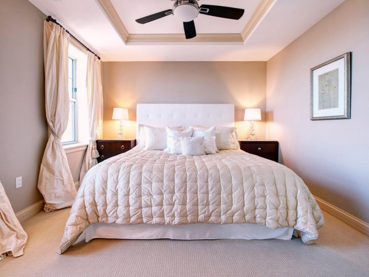 Lovely Bedroom with Tray Ceiling