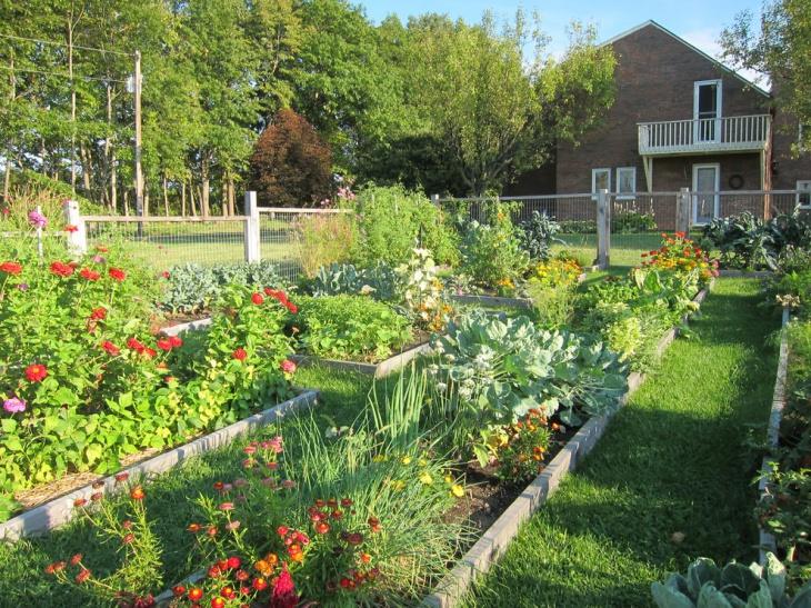spacious garden with grass lawn