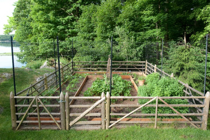 spring garden with deer fencing