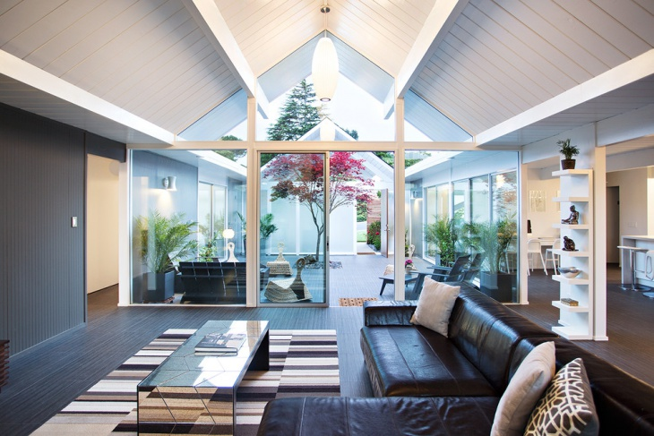 Mid Century Living Room Roof Idea