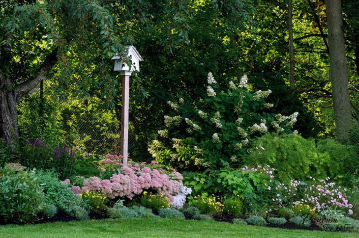 summer spring gardening design
