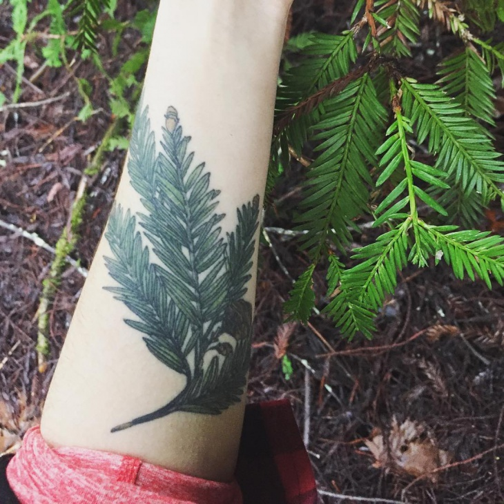 Nature Science Tattoo on Hand