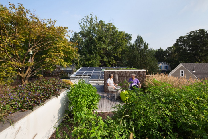 Tree Roof Gardens