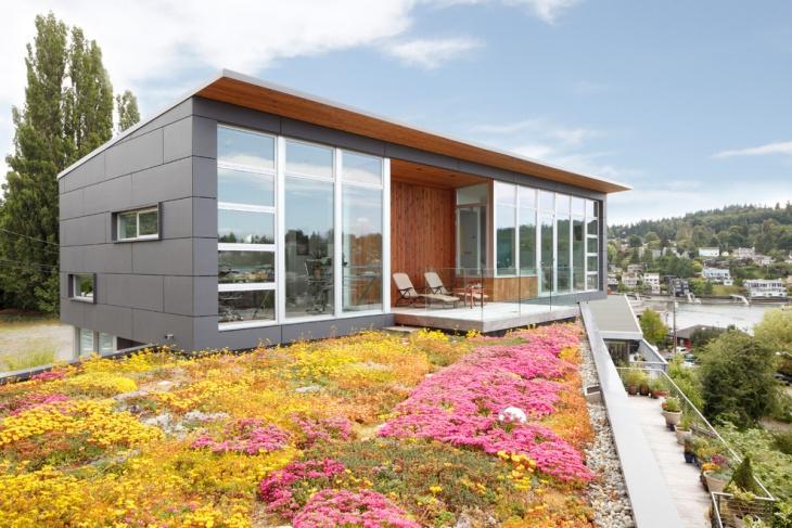 Beautiful Flowers Roof Garden