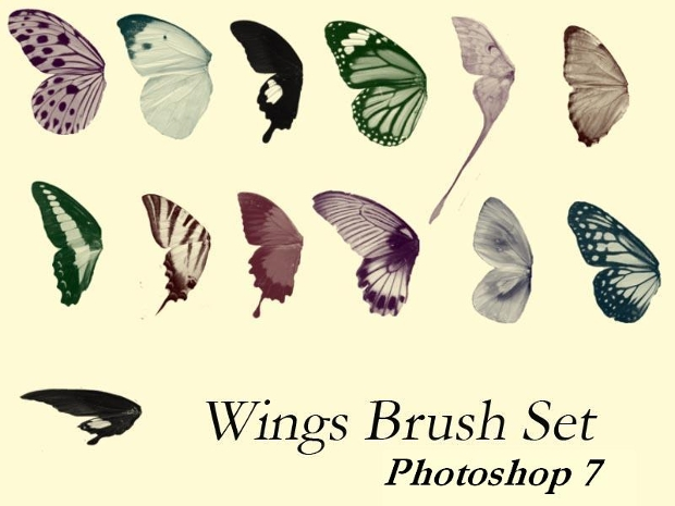 photoshop butterfly wing brushes