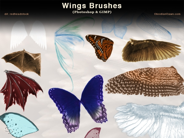 high resolution wing brushes