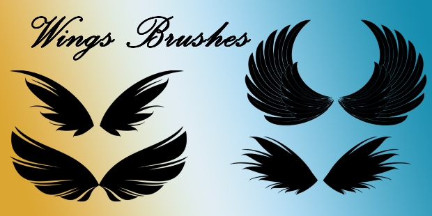 feathered wing photoshop brushes