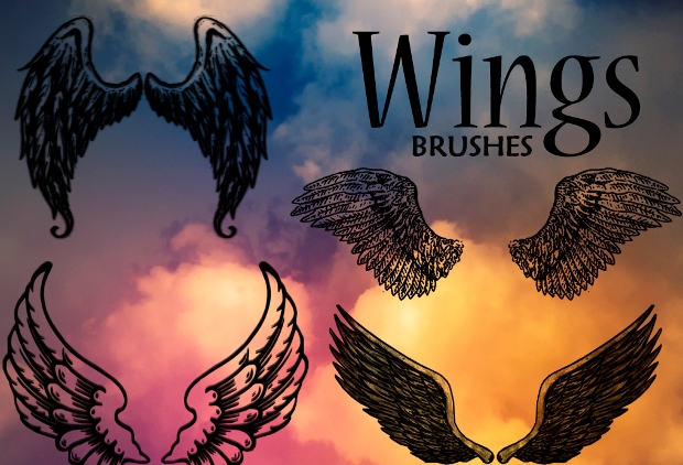 bird wings photoshop brushes
