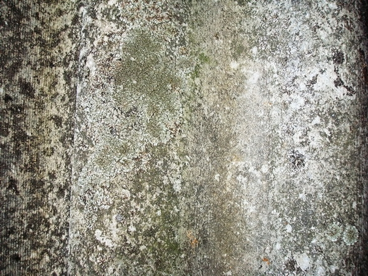 Roofing Grunge Stone Texture