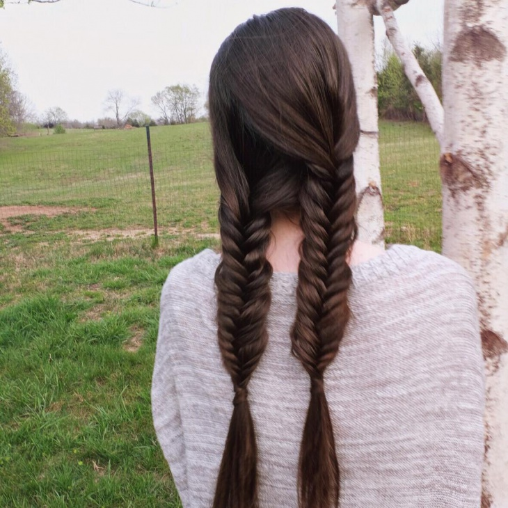 Fishtail Pig Braided Hairstyle