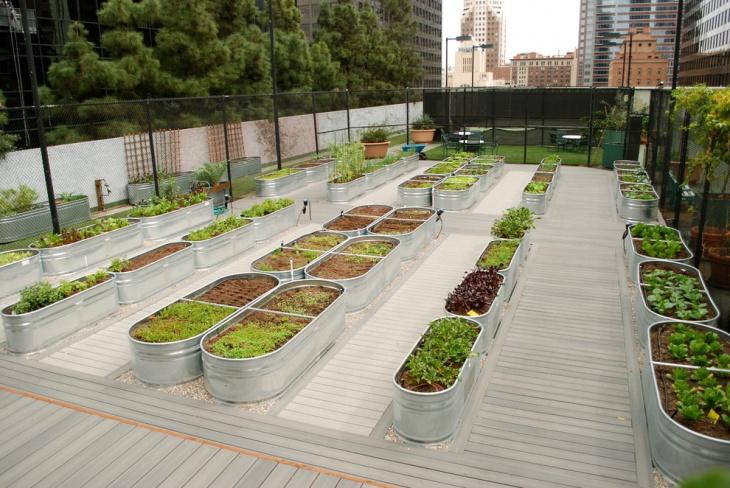 rooftop garden containers