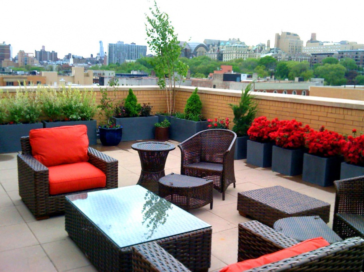 stylish and beautiful rose roof garden
