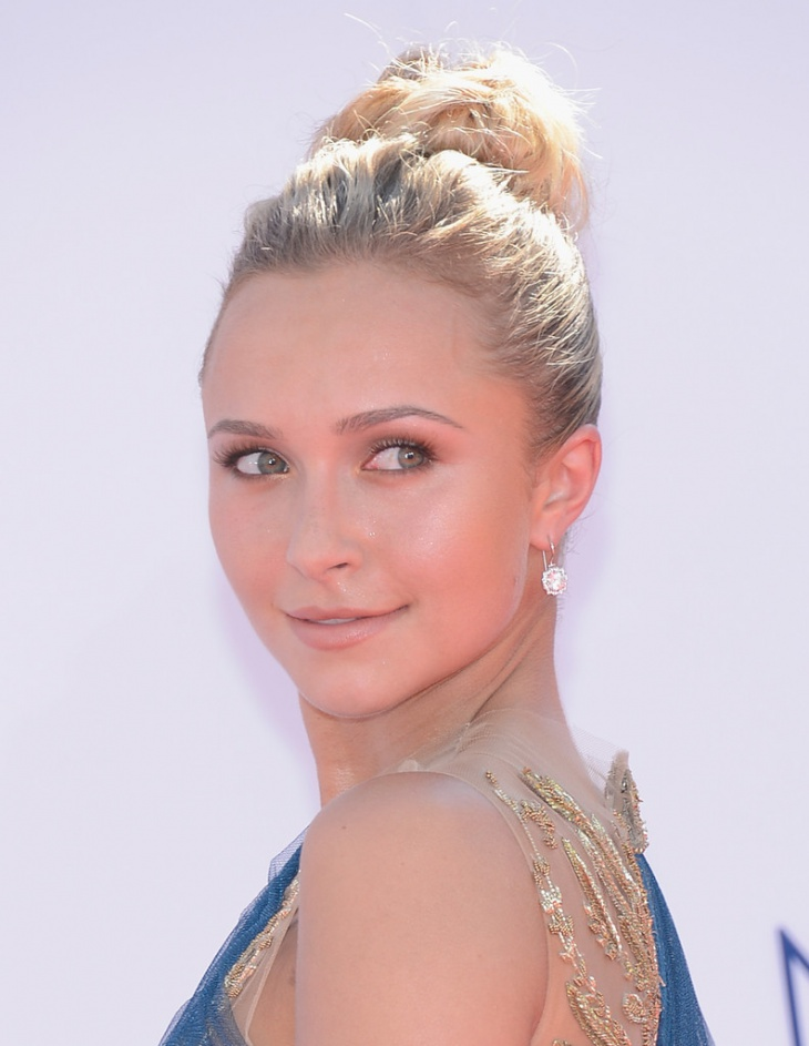 hayden panettiere updo hairstyle idea