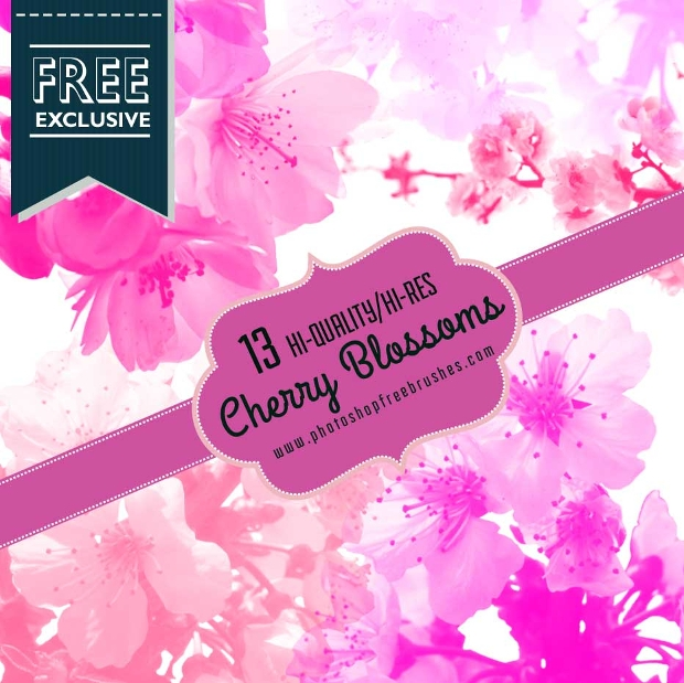 Abstract Cherry Blossom Brushes