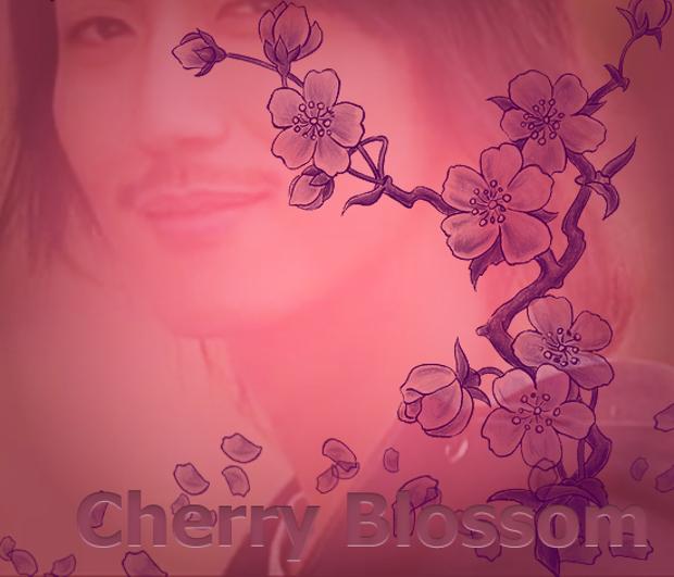free cherry blossom brushes psd