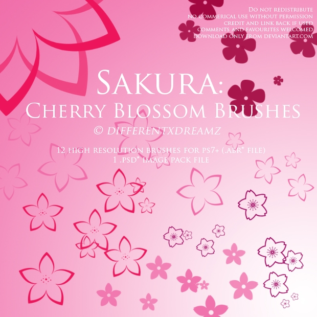 Sakura Cherry Blossom Brushes