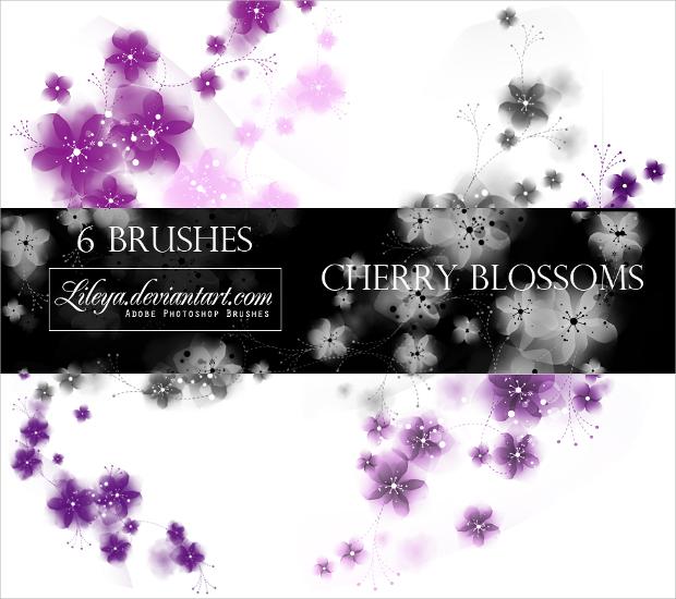 cherry flower photoshop brushes