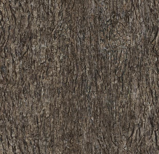 Tileable Tree Bark Texture