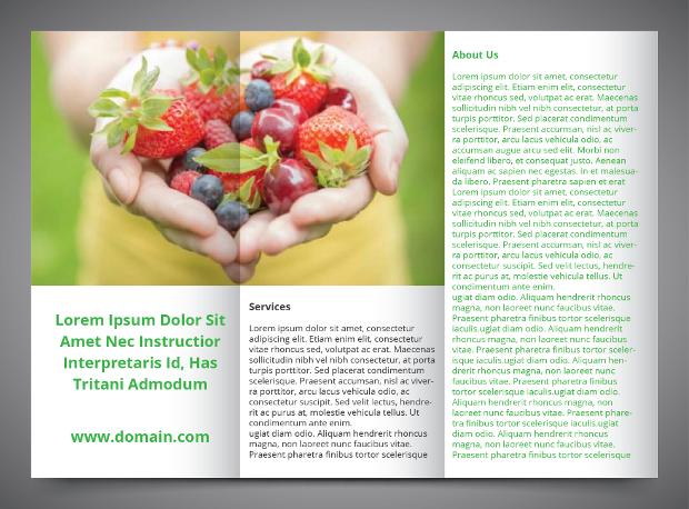 Trifold Health Brochure