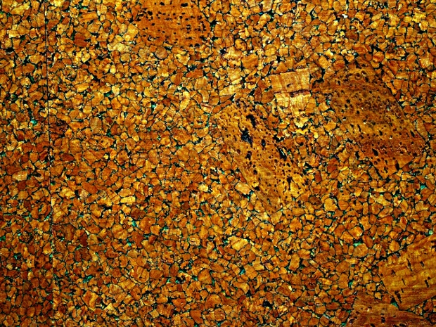 Gold and Brown Cork Texture