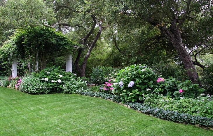 shade perennial design