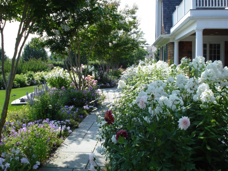white perennial flower garden