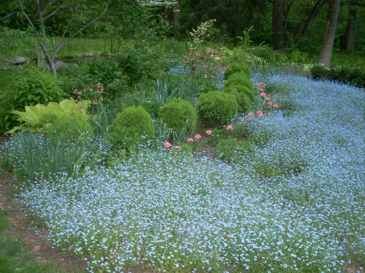 Natural Perennial Gardening Idea