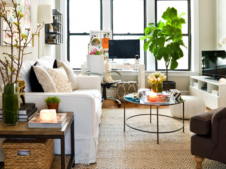Eclectic Compact Living Room