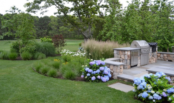 Small Hydrangea Plants