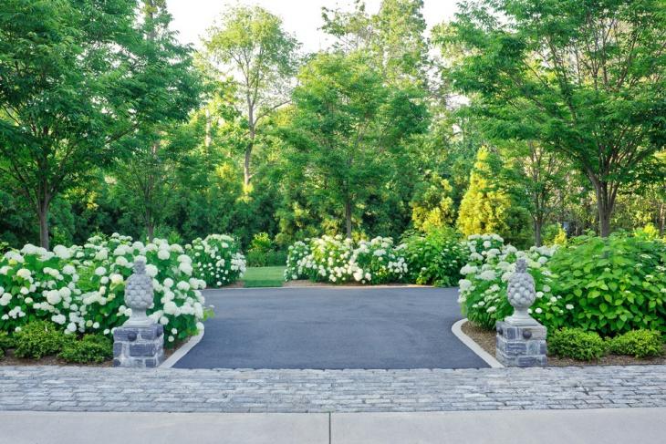 Driveway Hydrangea Garden