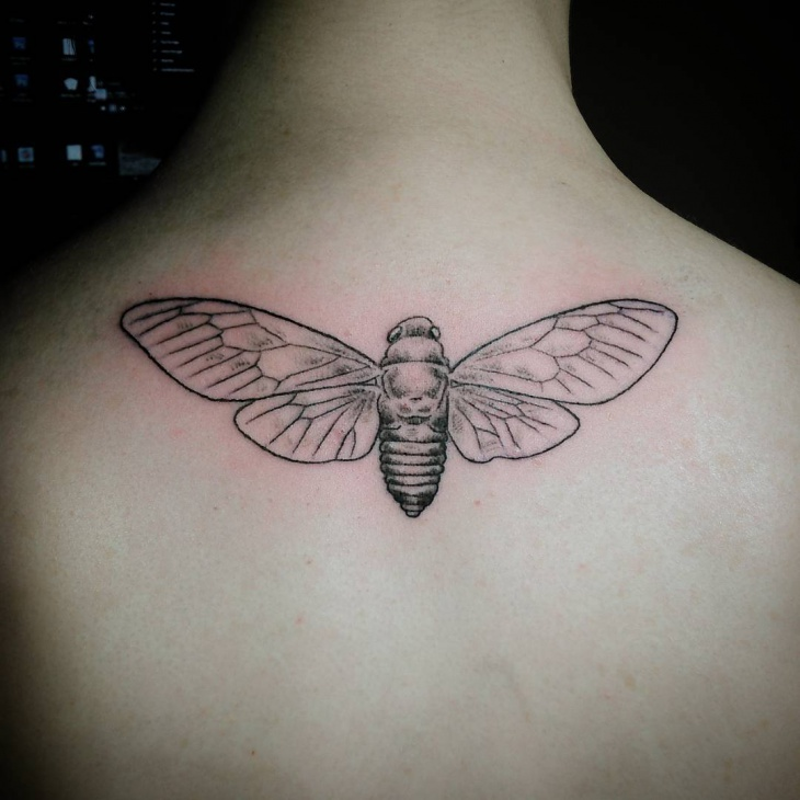 Custom Insect Tattoo on Back