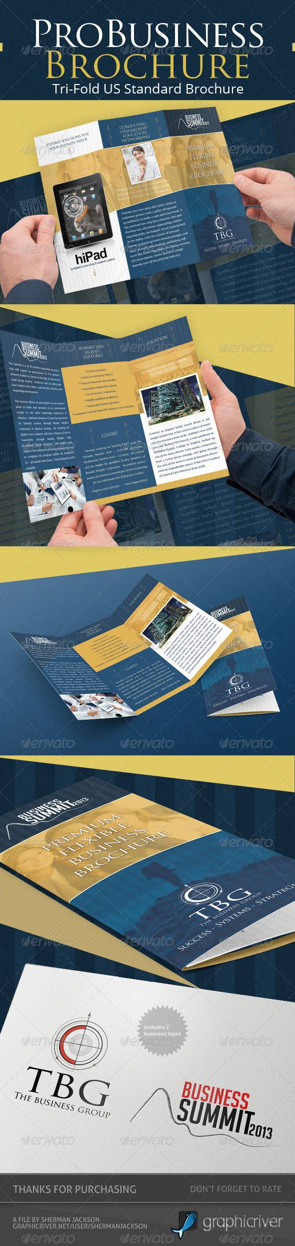Pro Business Trifold Brochure PSD Template