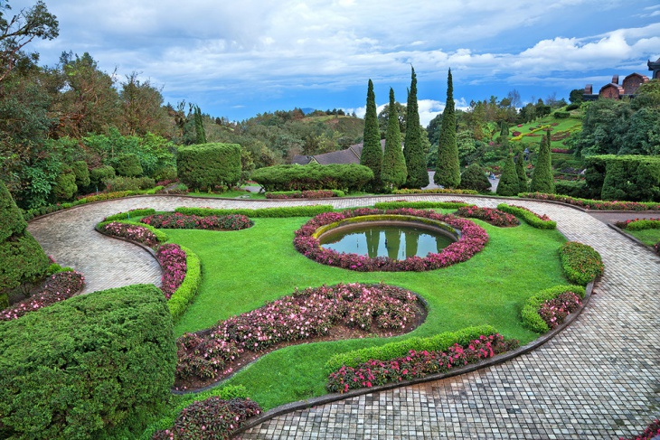 Pink Topiary Garden Design
