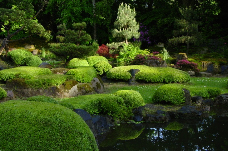 Topiary Ideas Part - 25: Diy Topiary Garden Idea