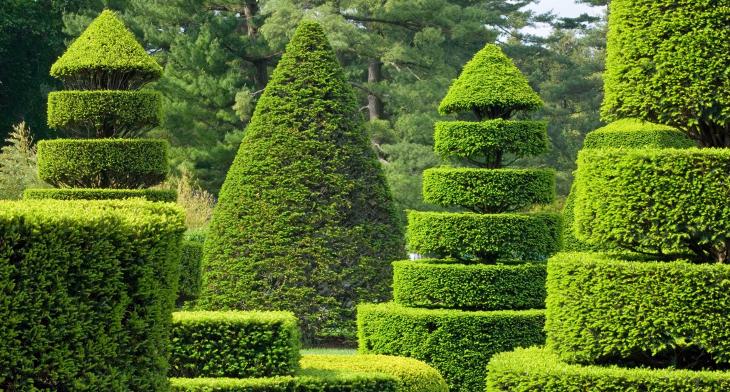 Landscape Architecture Design Garden Walkways