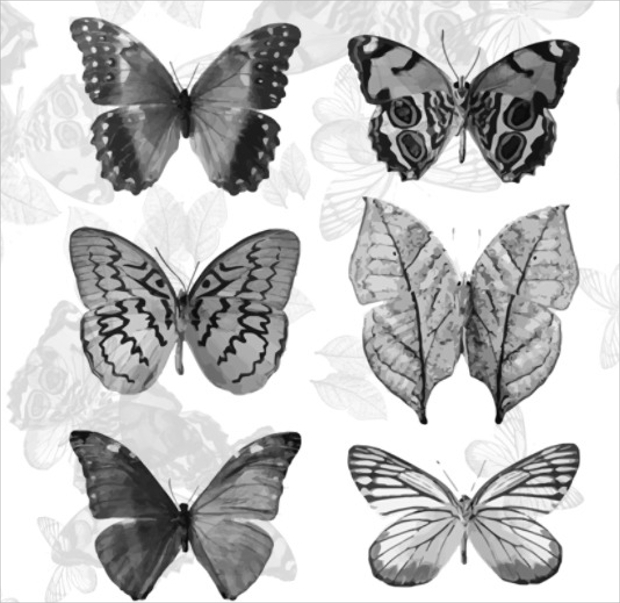 Abstract Butterfly Brushes