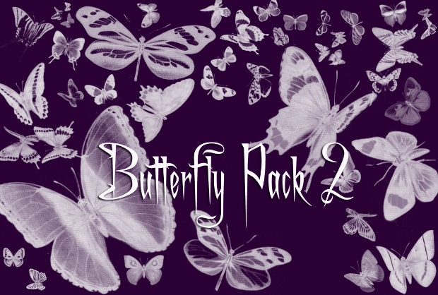 Butterfly Photoshop Brushes Pack